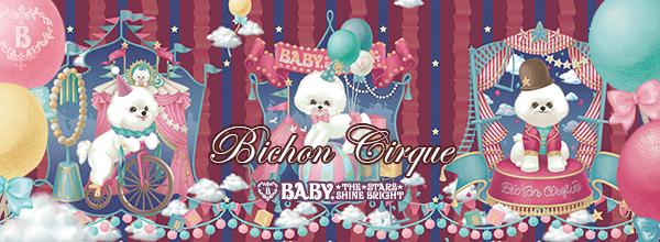 Bichon Cirque